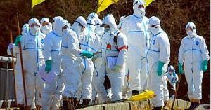 На севере Японии произошла утечка 5 тонн ядовитого цианида