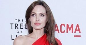 Актриса Анджелина Джоли удалила грудь, побоявшись рака